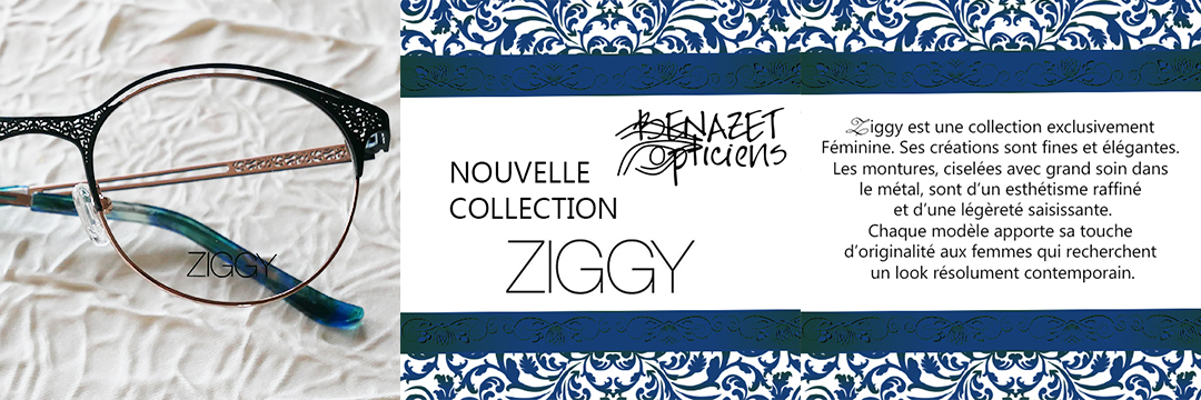 Nouvelle collection Ziggy